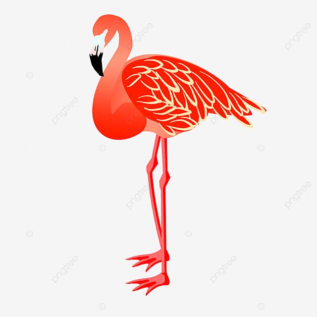 Style Flamant Dessin Animé Flamingo Flamant Dessiné à La