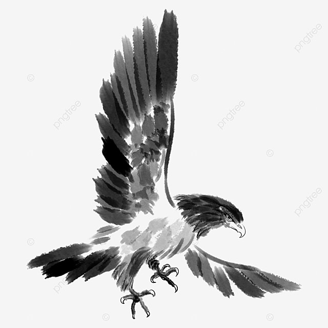 Terbang Helang Sayap Hitam Dan Putih Ilustrasi Kartun Yang Mudah