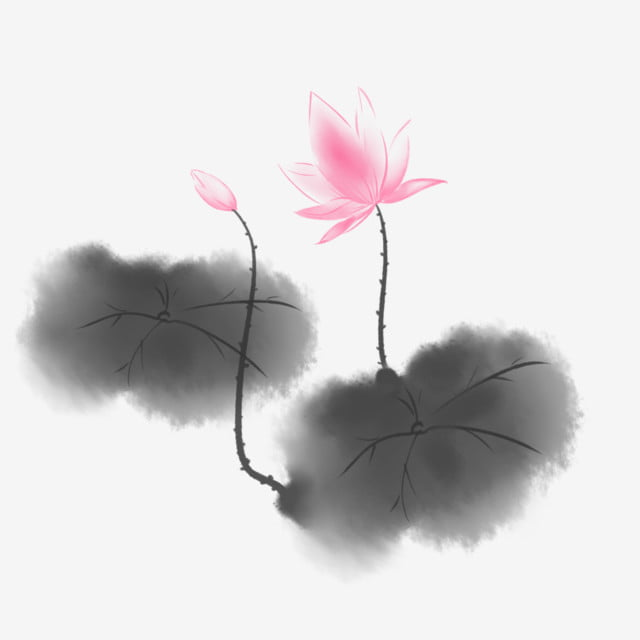 Pink Ink Lotus Ink Black Lotus Leaf Beautiful Lotus Pink Lotus