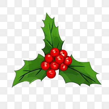 Christmas Holly Clipart Free.Holly Png Vector Psd And Clipart With Transparent