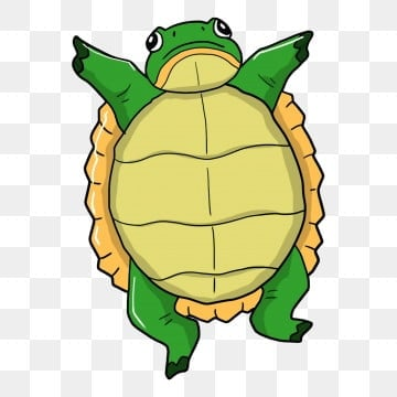 Cartoon Turtle Png Images Vector And Psd Files Free Download