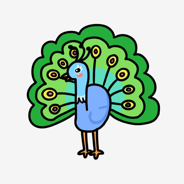 Cute animal peacock. Cartoon lovely bird opening