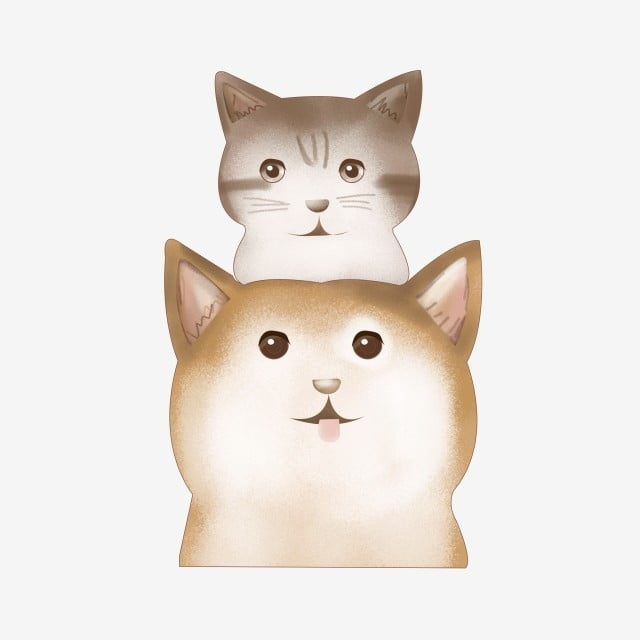 Cat Cat Garfield Gato De Estimacao Gato Cinzento Cat Gato Dos