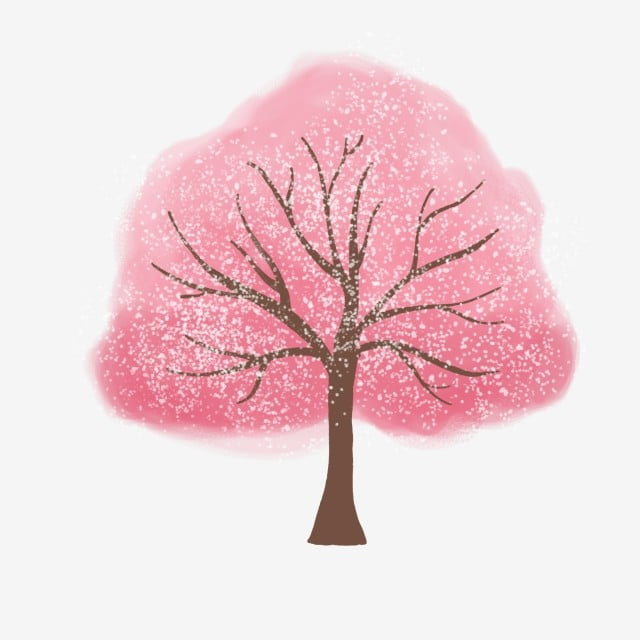Cherry Blossom Tree Png Vector Psd And Clipart With
