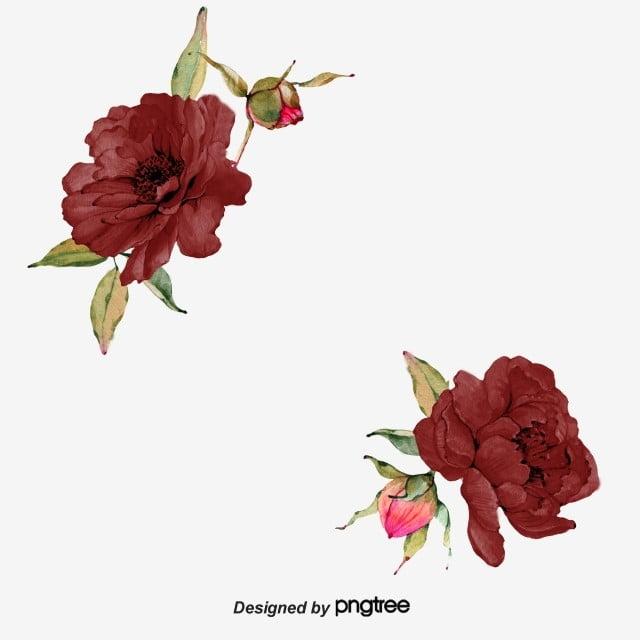 saffron burgundy rose border  originality  burgundy  primitive simplicity png transparent