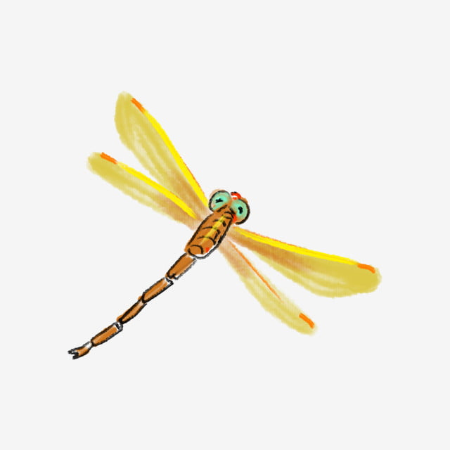 黄色のトンボイラスト飛んでいるトンボ黄色い翼緑の目 昆虫 動物 夏虫画像とpsd素材ファイルの無料ダウンロード Pngtree