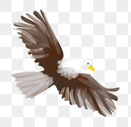 Eagle Cartoon Png Images Vector And Psd Files Free