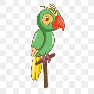 Parrot PNG Images | Vector and PSD Files | Free Download on