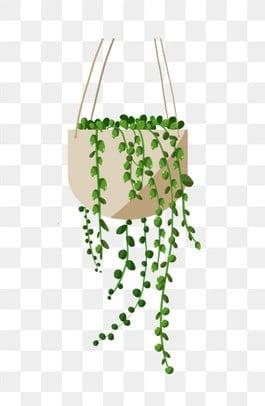 dessin de feuilles vertes png vecteurs psd et ic nes pour t l chargement gratuit pngtree. Black Bedroom Furniture Sets. Home Design Ideas