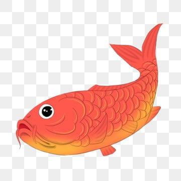 рыжий черный рыбий глаз рыжий хвост рыбки, клипарт золотая рыбка, Рыба, кои PNG и PSD