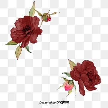 Saffron Burgundy Rose Border, Originality, Burgundy, Primitive Simplicity PNG and PSD