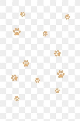 Paw Prints PNG Images | Vector and PSD Files | Free Download