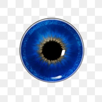 Blue Eyes Png Images Vector And Psd Files Free
