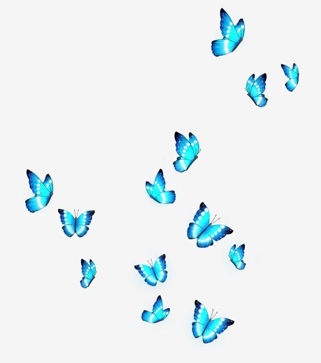 A Group Of Butterflies Png Vector Psd And Clipart With