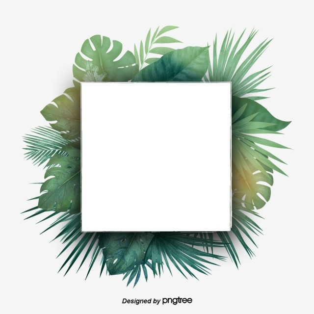 green and refreshing tropical palm leaf square border