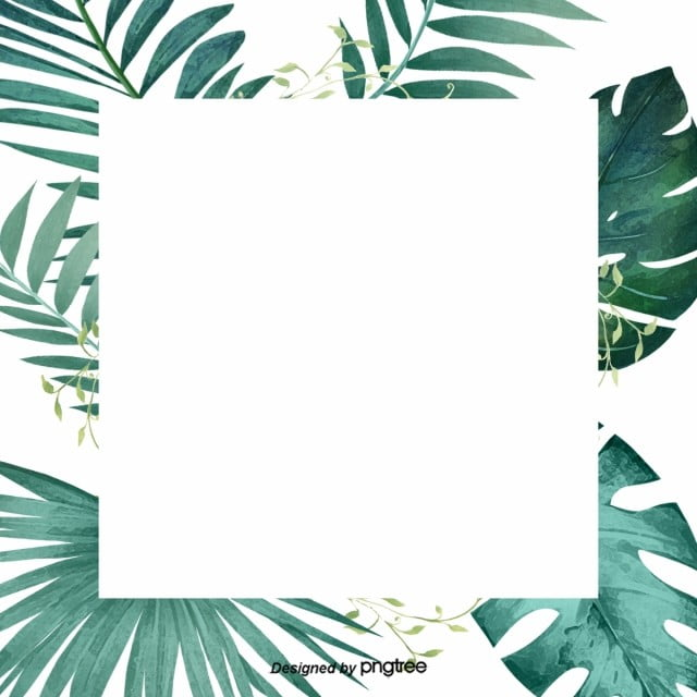 Green Little Refreshing Tropical Palm Leaf Border