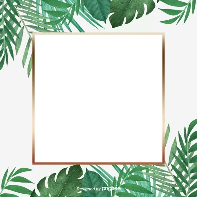 green little refreshing tropical palm leaf golden border