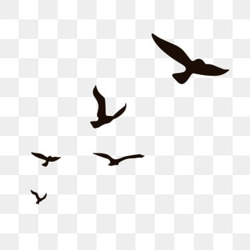 Flying Bird PNG Images | Vector and PSD Files | Free Download on Pngtree