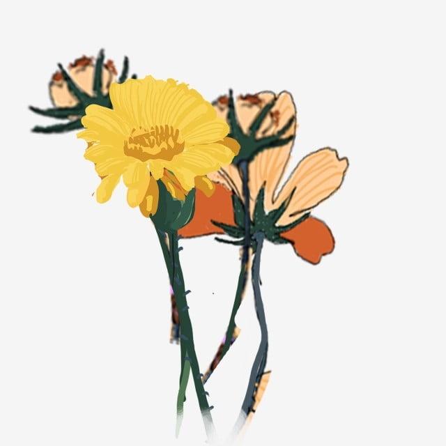 Flor De Dibujos Animados Muchas Flores Amarillas De Dibujos Animados