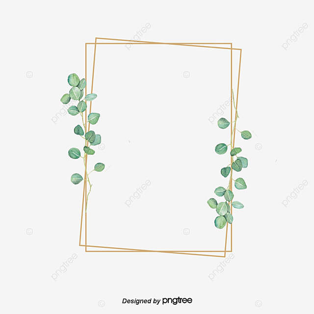 Eucalyptus Png Vector Psd And Clipart With Transparent