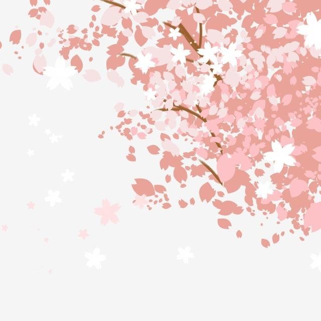 Pink Cherry Blossoms Romantically Cherry Tree Pink Romance Japanese