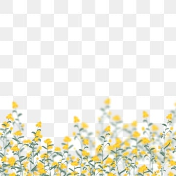 yellow flowers png vector psd and clipart with transparent background for free download pngtree yellow flowers png vector psd and