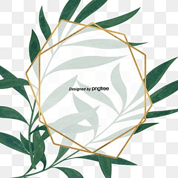 green little refreshing eucalyptus leaves with simple gold border, Eucalyptus Leaves, Botany, Plant Border PNG and PSD