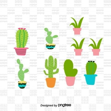 Cartoon Cactus PNG Images | Vector and PSD Files | Free