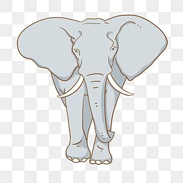 Clipart Elephant Images, Stock Photos & Vectors   Shutterstock