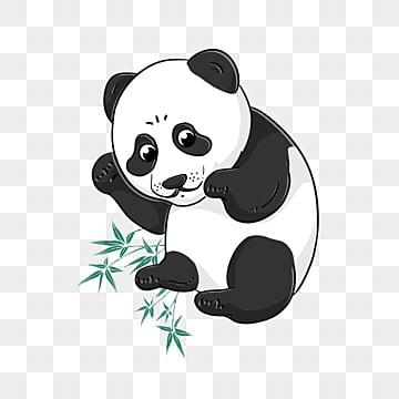 Download 93+ Gambar Panda Kartun Png Terbaik Gratis