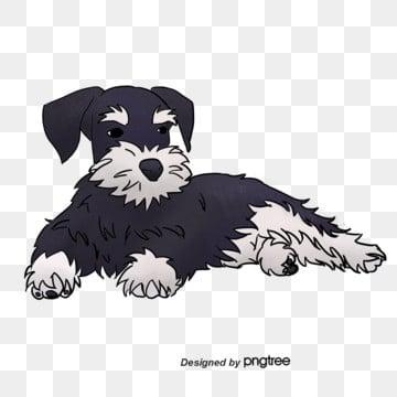 Perro Blanco Y Negro Png Vectores Psd E Clipart Para