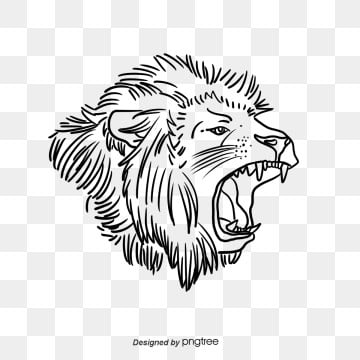 lion clipart in white sketch, Clipart, Clip Art, Cartoon PNG and PSD