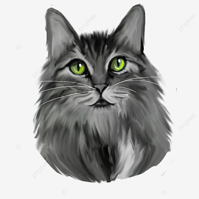 elemen kepala kucing abu abu bermata hijau pintar elemen hewan png transparan gambar clipart dan file psd untuk unduh gratis elemen kepala kucing abu abu bermata