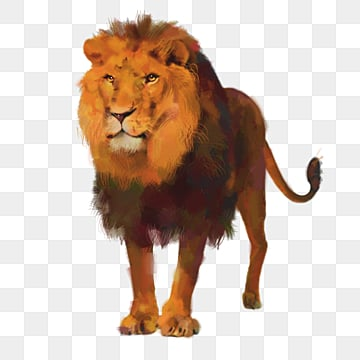 lion element  king of the forest, Element, Animal, King Of The Forest PNG and PSD