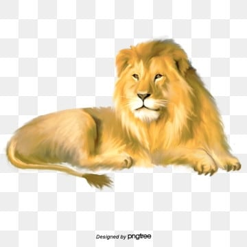lion elements of feline animals, Element, King Of The Forest, Lioness PNG and PSD