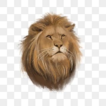 Sư tử là vua của các loài thú rừng nguyên tố, Nguyên Tố, Dữ, Động Vật png và psd