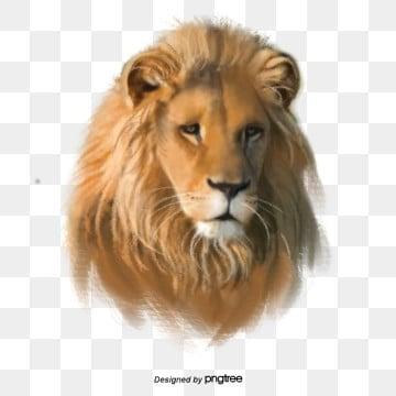 Vua sư tử nguyên tố rừng bằng tay, Nguyên Tố, Dữ, Động Vật png và psd