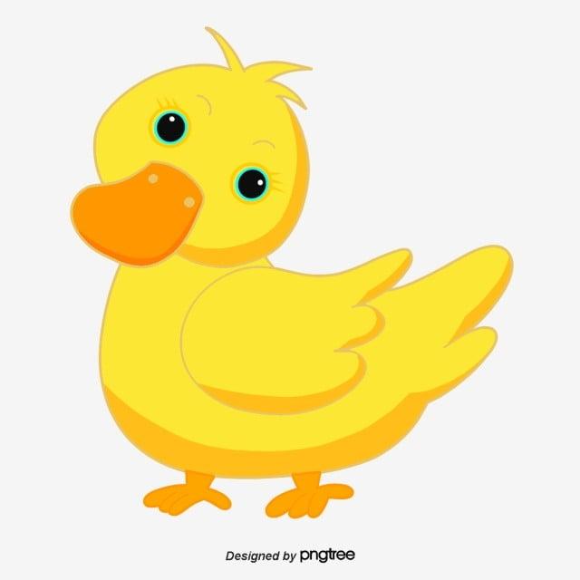 البطه الصفراء كرتون