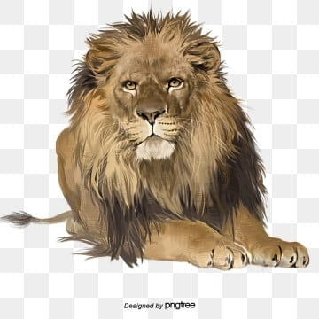 Lion Png Images Download 3815 Lion Png Resources With