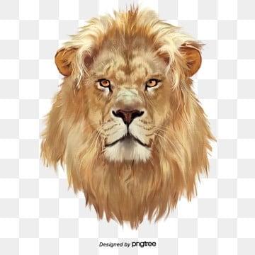 Yếu tố đầu sư tử bằng tay có màu nâu hung hãn, , Động Vật, Bằng Tay png và psd