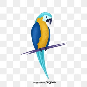 Bird PNG Images, Download 16,189 Bird PNG Resources with