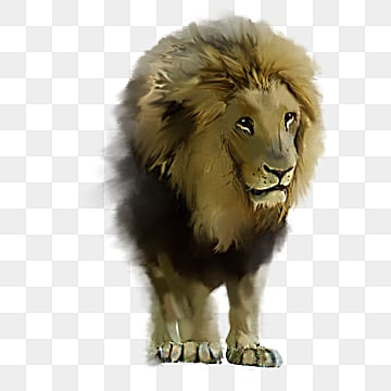 hand painted elements of lion image, Male Lion, Fierce And Fierce, Animal PNG and PSD