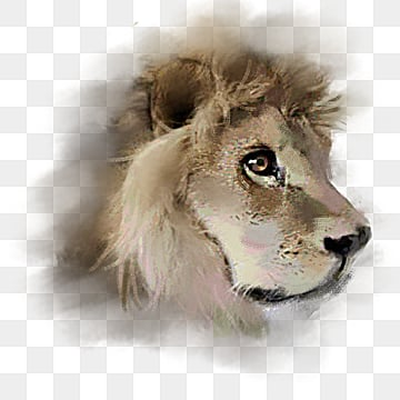 lovely beast lion hand painted head elements, Male Lion, Ferocious, Hand Painted PNG and PSD