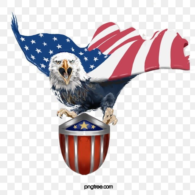 American Eagle American Flag Shield Eagle Element Animal Country