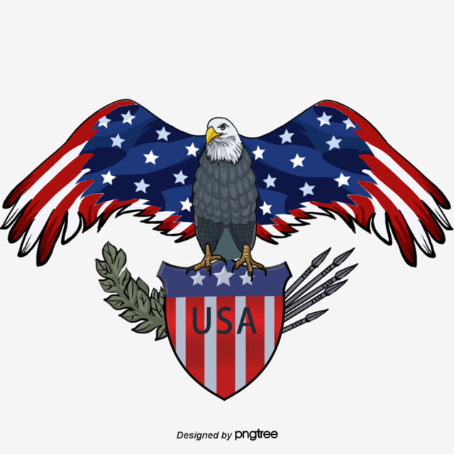 American Flag Shield American Eagle Hand Painted Elements National