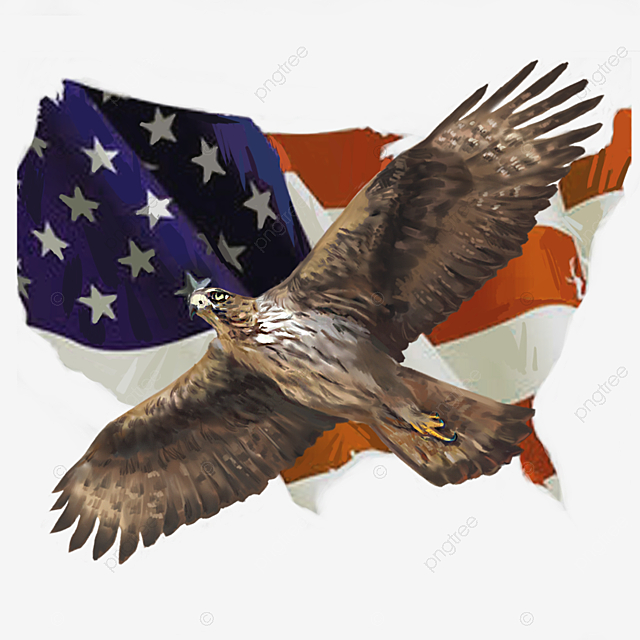 Hand Painted Elements Of American Flag Flying American Eagle