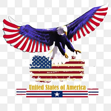 American Eagle  American Flag Eagle Element, Animal, Country, Badge PNG and PSD