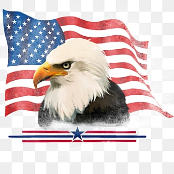 Hand-painted Elements of American Flag for American Eagle White-Headed Sea Eagle, Animal, Country, Badge PNG and PSD