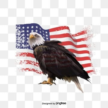 Hand-painted Elements of American Flag, National Flag, National Bird, Hand Painted PNG and PSD