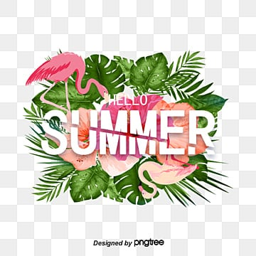 summer promotion frame for green tropical plants, Summertime, Summer Rim, Tropical Plants PNG and PSD